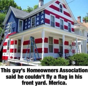 americanhouse